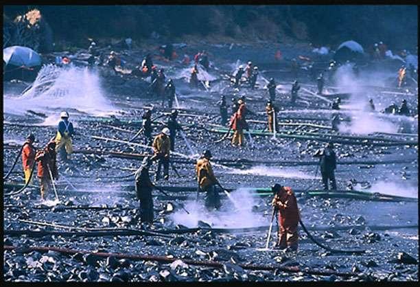 limpeza do desastre